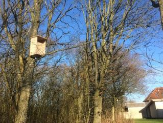 Fuglekasser i Nørre Nissum