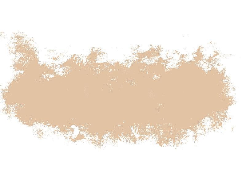 brush brown.jpg