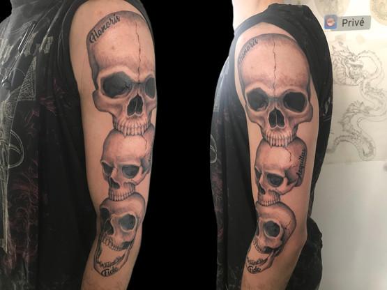 Crâne skull