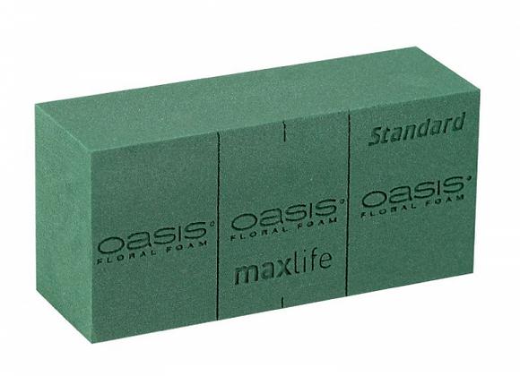 OASIS Standard Steckschaum