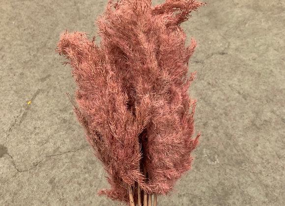 Reed Plume Vinz Light Pink