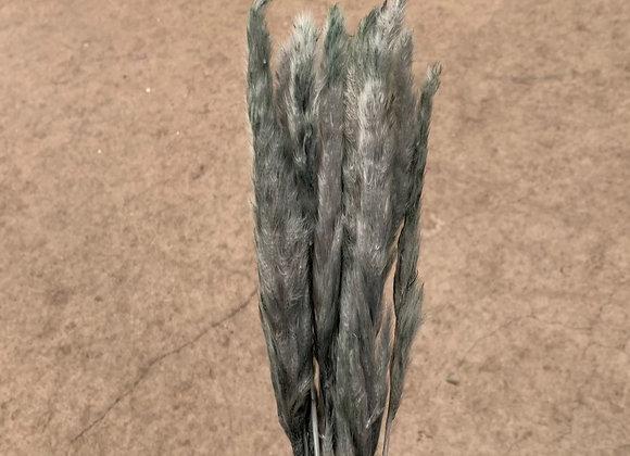 Pampasgras 75cm Mint Green