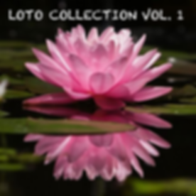 Copertina Loto collection vol 1.png