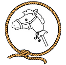 hobby-horse-rodeo-party-wichita-ks1.png