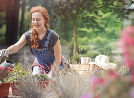 Donice ogrodowe - co i jak w nich posadzić?