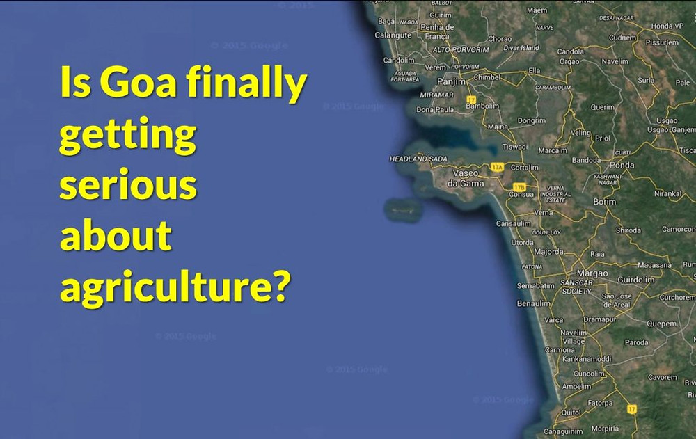 Agriculture in Goa needs to focus on diversity and quality