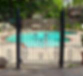 Custom Wrought Iron Gate for Pool