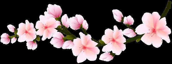 spring-branch-transparent-115468672818xr