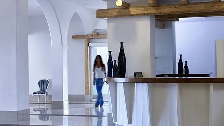 Esperia Restaurant Group Food & Beverage Mocinno .jpg