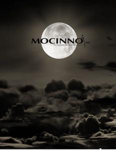 Mocinno International - Hotel Consulting