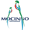 Mocinno International