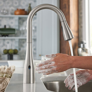 cat-moen-kitchen-faucets.jpg
