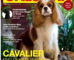 Nossa entrevista sobre a raça Dobermann para a revista Cães e Cia