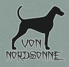LOGO VON NORDSONNE COM FUNDO VERDE.jpg