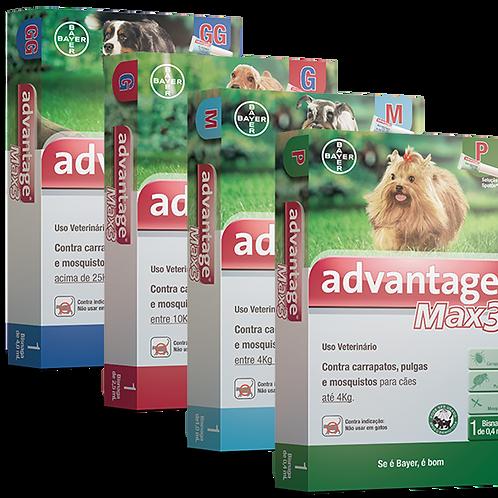 Advantage Max3 - pulgas e carrapatos