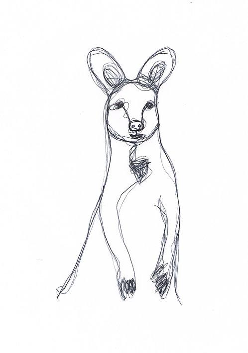 A5 Kangaroo Print