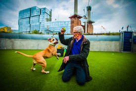 Paul O'Grady for the Love of Dogs - Battersea Dogs Home