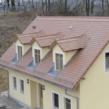 Neubau I Einfamilienhaus als Winzerhaus, Golk