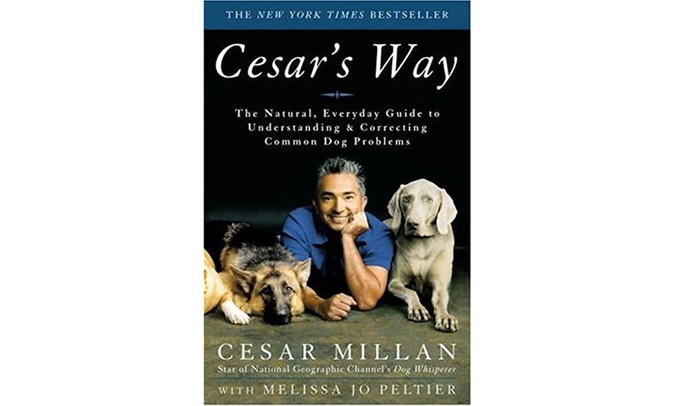 Cesar's Way: The Natural, Everyday Guide to Understanding and Correcting