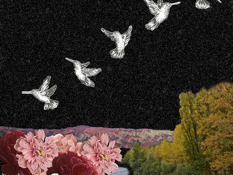 Collage del insomnio