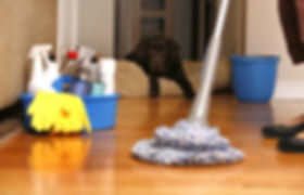 house cleaning christchurch
