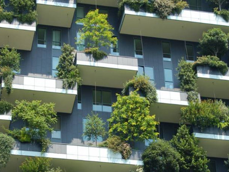 Sustainable built environment and the Developing World