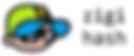 zigi hash logo.png