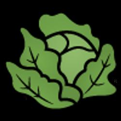 floor-lettuce_tr