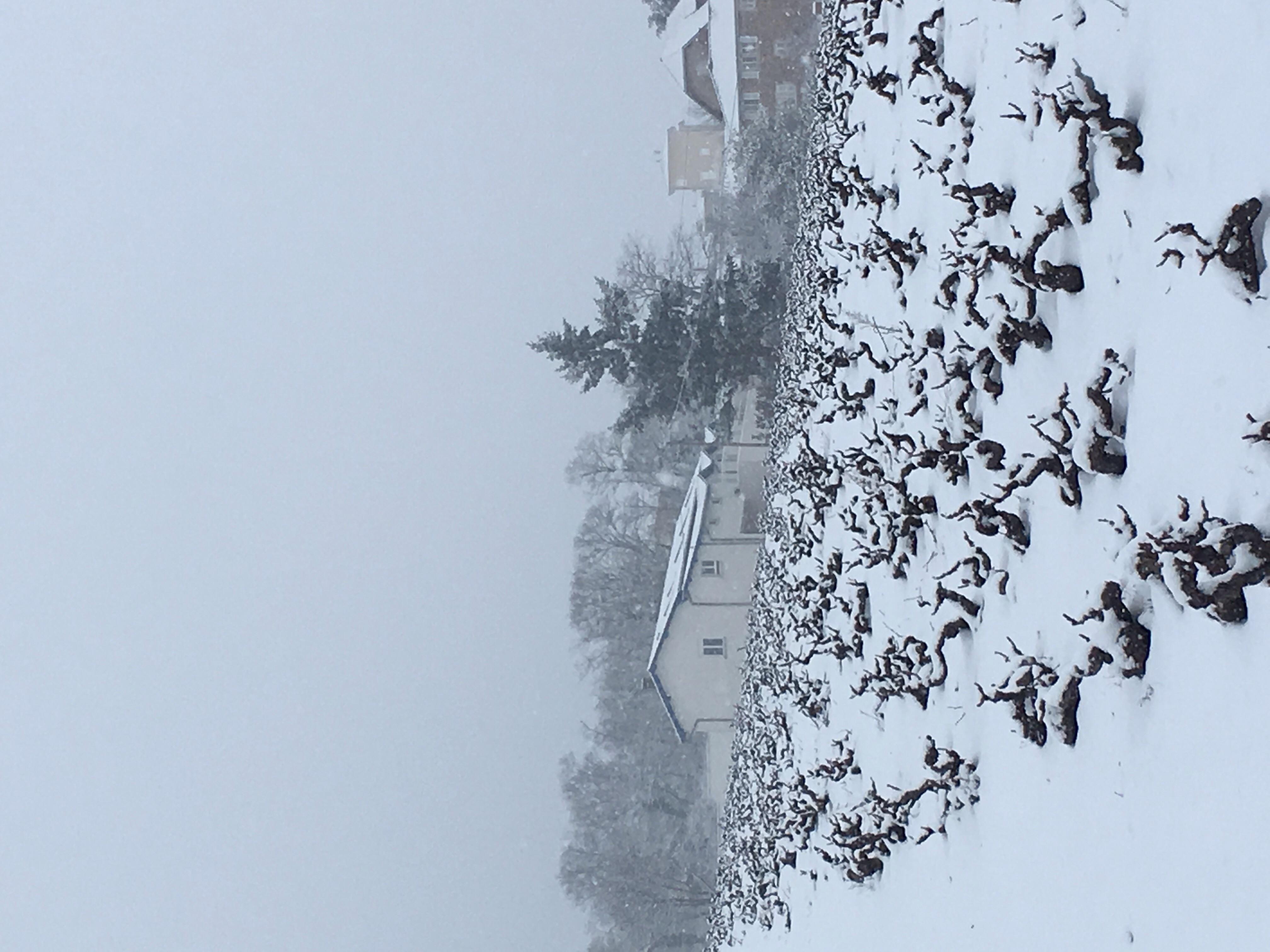 gîte_sous_la_neige