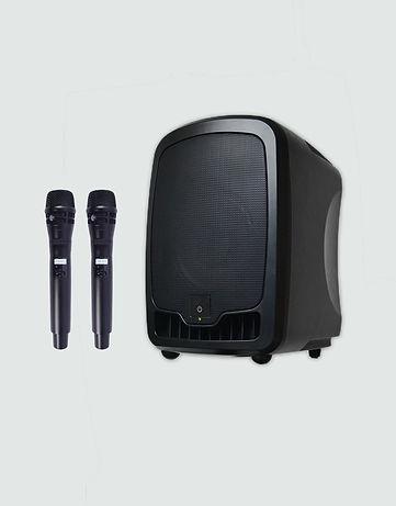 C2 wireless mic.jpg