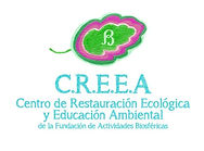 8-CREEA%20Logo_edited.jpg