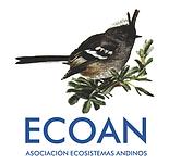ECOAN CUADRADO FONDO BLANCO.png