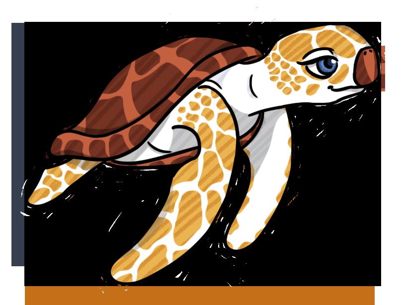 Vipsania the Turtle