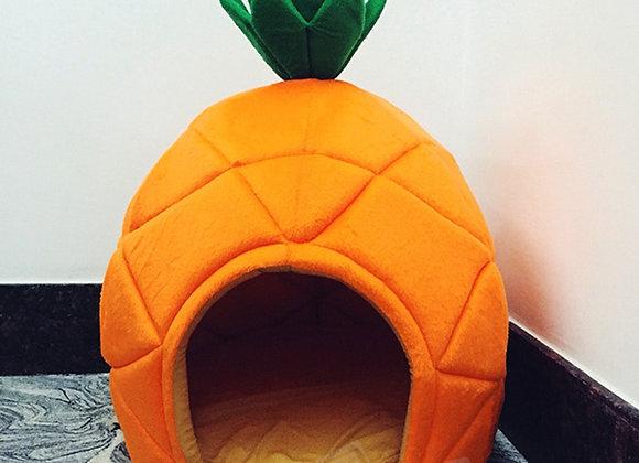 Dog/Cat Fruity House