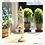 Thumbnail: Yoga Cat Home Decor