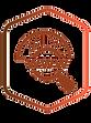 Digi Domain Transparent logo.png
