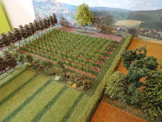 Maquette modulable trames vertes en milieux agricoles