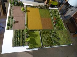 Paysages agricoles et brise-vents