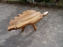 Table basse Corse Orme massif