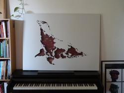 Carte du monde Otarie