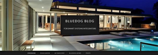 bluedogblog.png