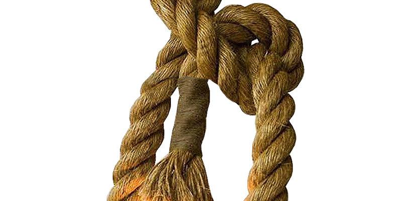 Leandra 1-light Hemp Rope Pendant