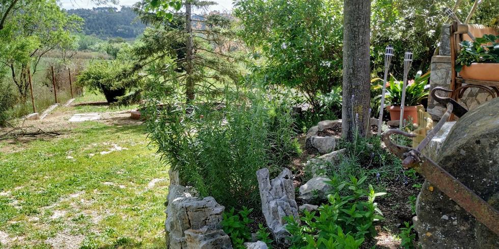 Detalle general jardin