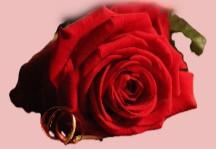 La Saint Valentin : Période propice pour les rituels d'Amour
