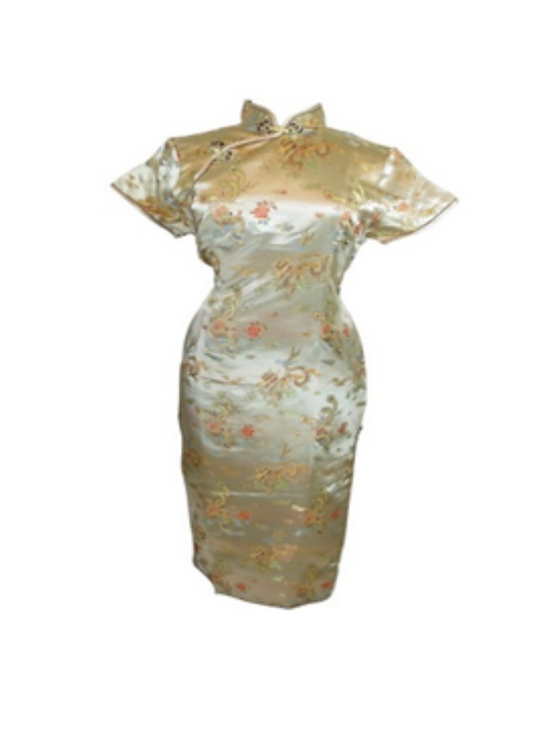GOLD ORIENTAL DRESS - RENTAL FEE $30.00