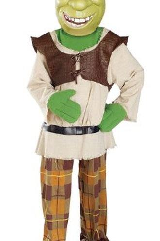Boys Shrek costume