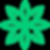 zija-international-logo-drink-moringa-17