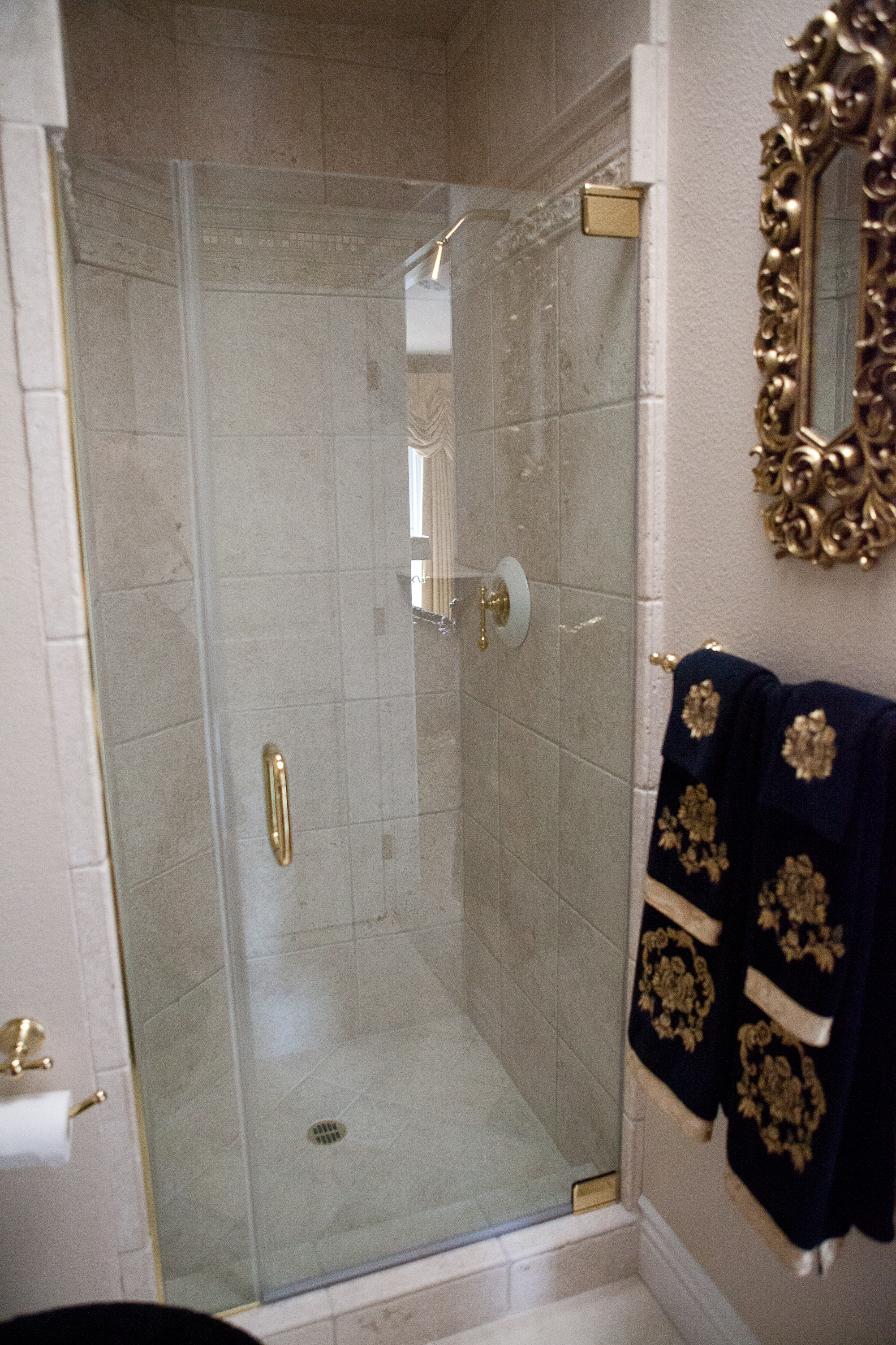 shower door 5