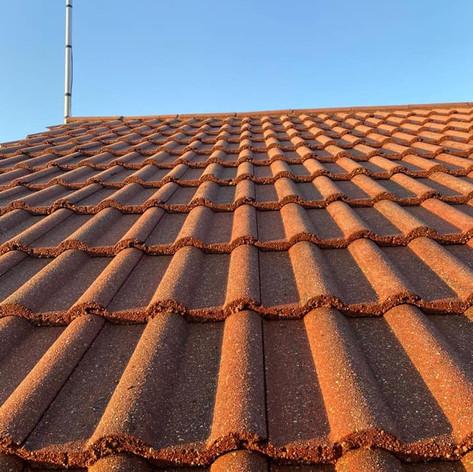 roof cleaning beckenham