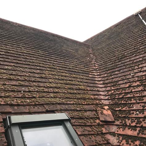 beckenham roof cleaning